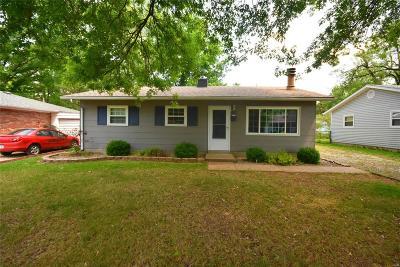 Belleville Single Family Home For Sale: 4117 North Park Drive