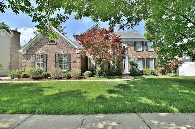 Chesterfield Single Family Home For Sale: 17121 Westridge Meadows Drive