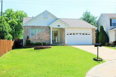 Single Family Home For Sale: 10252 Jeffrey David Court