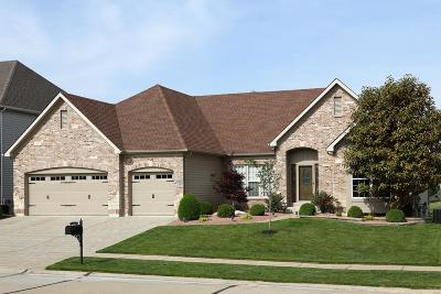 Dardenne Prairie Single Family Home For Sale: 1113 Keighly Crossing