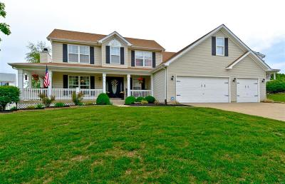 Wentzville Single Family Home For Sale: 518 Spring Meadow