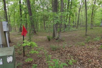 Residential Lots & Land For Sale: 41 Monroe Road 554