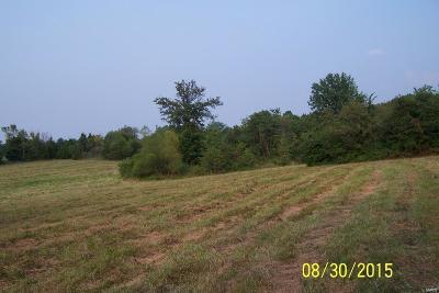 Foristell Farm For Sale: 25 Duenke Road
