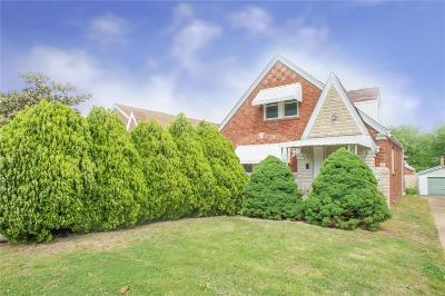 Single Family Home For Sale: 9024 Kathleen Avenue
