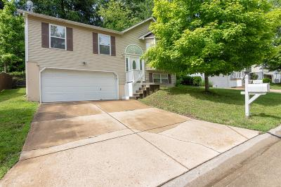 Valley Park Single Family Home For Sale: 941 Wynstay Circle