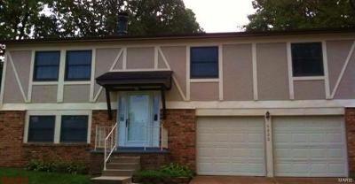 Single Family Home For Sale: 6220 Brogan Dale Circle