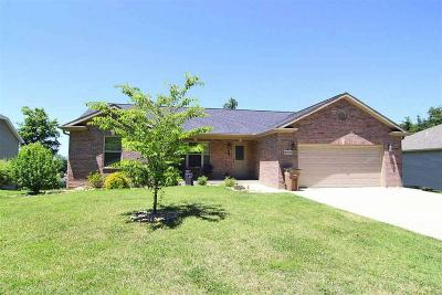 Cape Girardeau County Single Family Home For Sale: 2672 Benton Hill