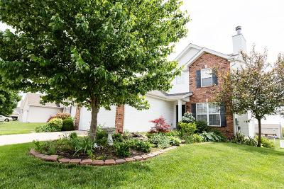 Fairview Heights Single Family Home For Sale: 804 Terra Springs Way