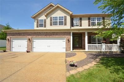 Wentzville Single Family Home For Sale: 205 Huntsdale