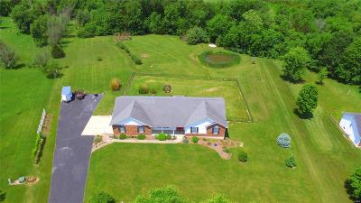 Moscow Mills, Troy Single Family Home For Sale: 225 Sugar Court