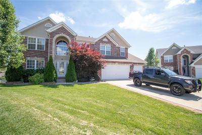 Wentzville Single Family Home For Sale: 14 Sunset Pointe Court