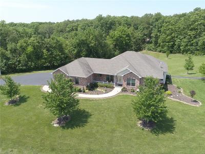Catawissa, Robertsville Single Family Home For Sale: 1725 Hendricks Road