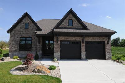 Maryville Single Family Home For Sale: 6294 West Park Row