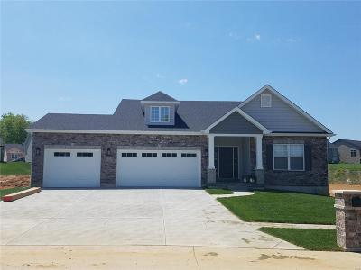Wentzville Single Family Home For Sale: Lot 687 Stone Ridge Canyon