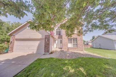 O'Fallon Single Family Home For Sale: 304 Schwarz Meadow Court