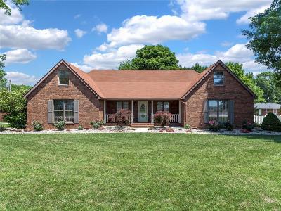 Moro, Bethalto Single Family Home For Sale: 207 West Moro Drive