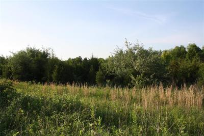 Franklin County, Gasconade County, Jefferson County, Lincoln County, Montgomery County, Pike County, St Charles County, St Louis City County, St Louis County, Warren County Commercial For Sale: 9 S Service Rd And Hwy E