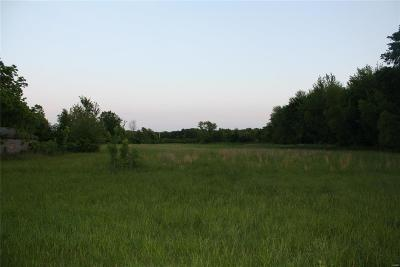 Lincoln County, St Charles County, St Louis City County, St Louis County, Warren County Farm For Sale: 11 Key Road