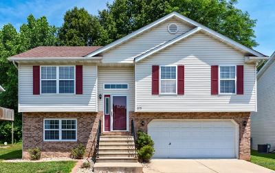 O'Fallon Single Family Home For Sale: 375 Sweetwater Lane