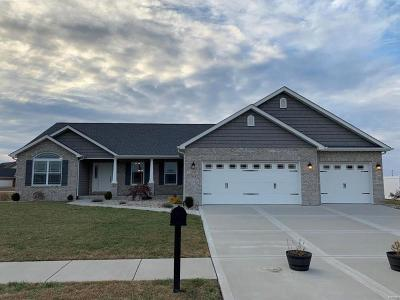 Belleville, Collinsville, Edwardsville, Glen Carbon, Highland, O Fallon, St Jacob, Swansea, Troy, Caseyville, Columbia, Fairview Heights, Lebanon, Mascoutah, Millstadt, New Baden, Shiloh, O'fallon Single Family Home For Sale: 3404 Navajo Trail