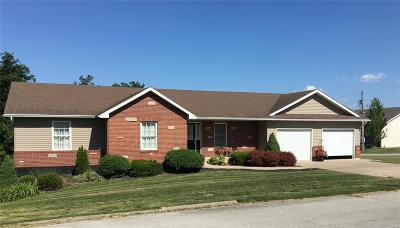 Hannibal MO Single Family Home For Sale: $224,900