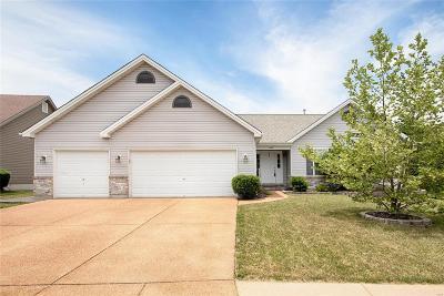 Wentzville Single Family Home For Sale: 609 Castle Ridge Drive