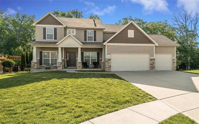 Wentzville Single Family Home For Sale: 436 Parkview Manor Lane