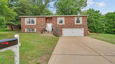 Red Bud Single Family Home Option: 617 Lakeview Drive