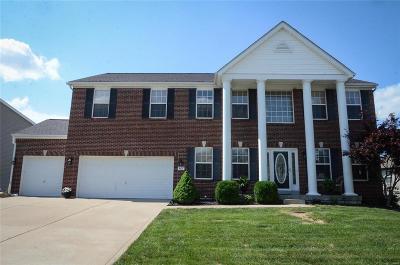Lake St Louis Single Family Home For Sale: 907 Bannon Circle Circle