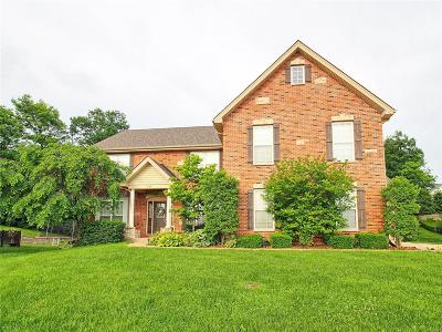 St Charles Single Family Home For Sale: 144 Heritage Sta.