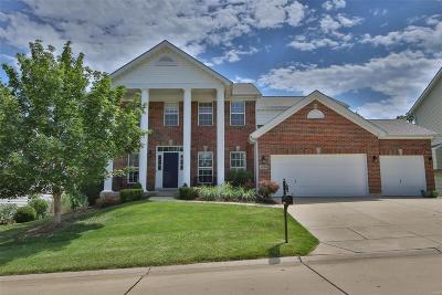 Ballwin Single Family Home For Sale: 1356 Kiefer Bluffs Drive