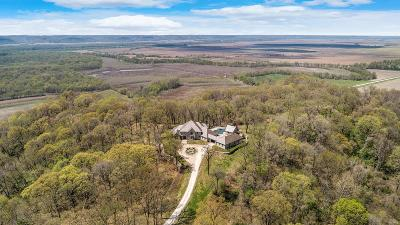 Single Family Home For Sale: 13202 Bull Hollow Road