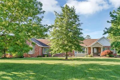 Wentzville Single Family Home For Sale: 106 Townview Drive