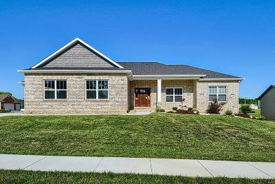 Troy IL Single Family Home For Sale: $310,000