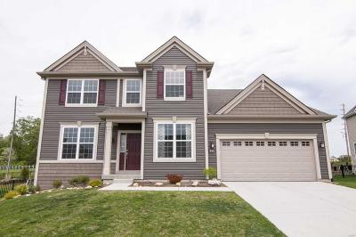 Wentzville Single Family Home For Sale: 216 Grayleaf Court