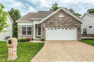 Single Family Home For Sale: 349 Newport Drive