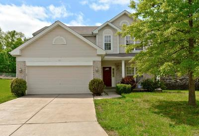 Ballwin Single Family Home For Sale: 567 Brook Meadow Drive