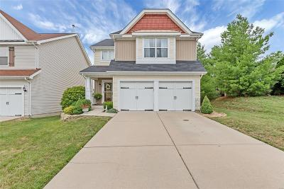 Lake St Louis Single Family Home For Sale: 401 Parkgate Drive