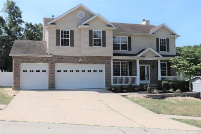 High Ridge Single Family Home For Sale: 6134 Timber Hollow Lane