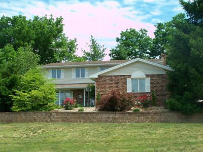 Hannibal MO Single Family Home For Sale: $349,000