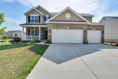 Wentzville Single Family Home For Sale: 221 Turning Mill Drive