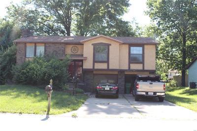 Belleville Single Family Home For Sale: 413 San Mateo
