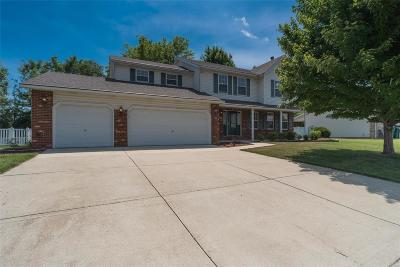Single Family Home For Sale: 513 Fairwood Hills Road
