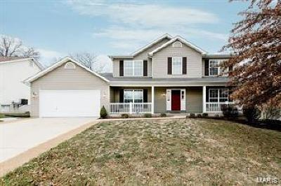 Wentzville Single Family Home For Sale: 514 Grand Canyon Ct