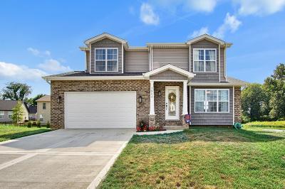 Caseyville Single Family Home For Sale: 7902 Laurel Flats Drive