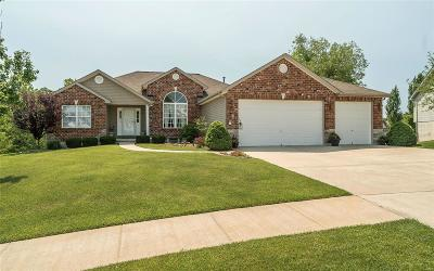 Wentzville Single Family Home For Sale: 4624 Darkwoods Drive