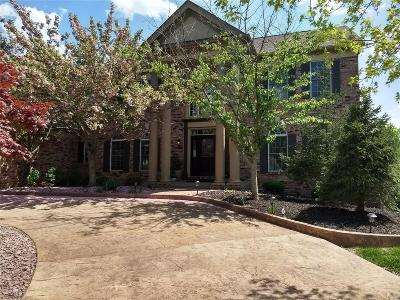 Town and Country Single Family Home For Sale: 730 Kraffel Lane