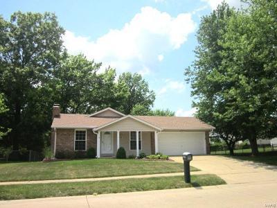 Single Family Home For Sale: 2489 Pheasant Run