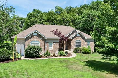 Warrenton Single Family Home For Sale: 23192 Fox Creek Road