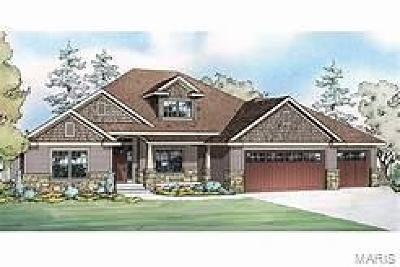 St Charles, Weldon Spring New Construction For Sale: Capitol Court